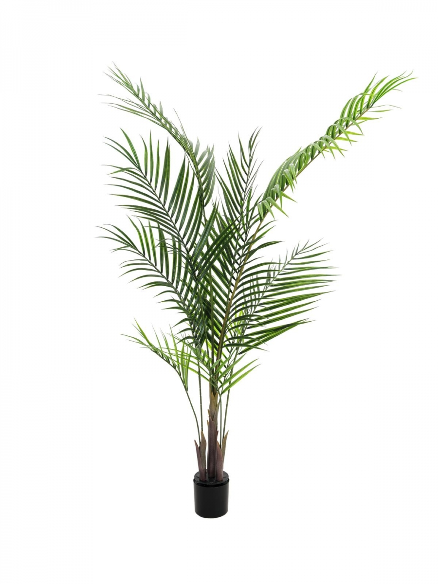 EUROPALMSAreca palm with big leaves, artificial plant, 165cm