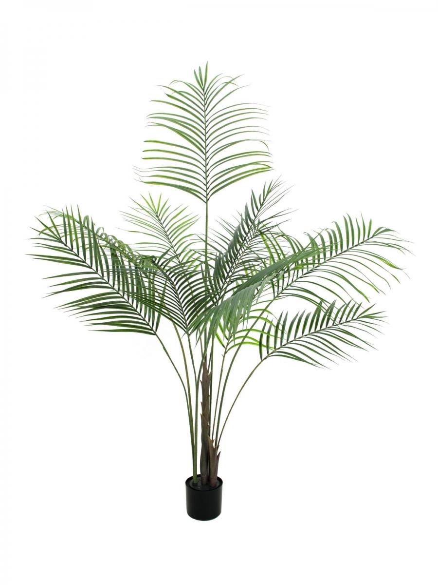 EUROPALMSAreca palm with big leaves, artificial plant, 185cm