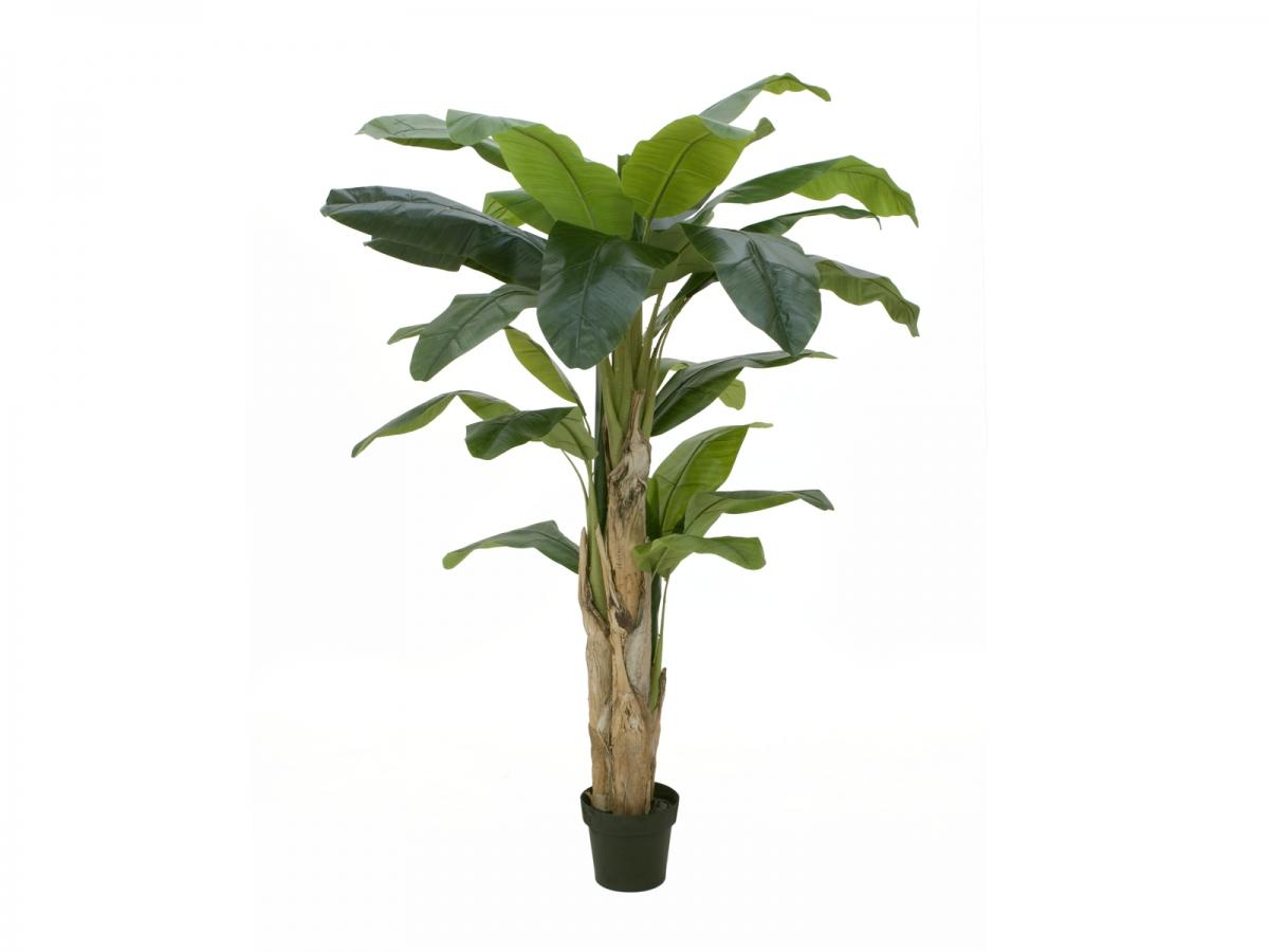EUROPALMSBanana tree, artificial plant, 170cm