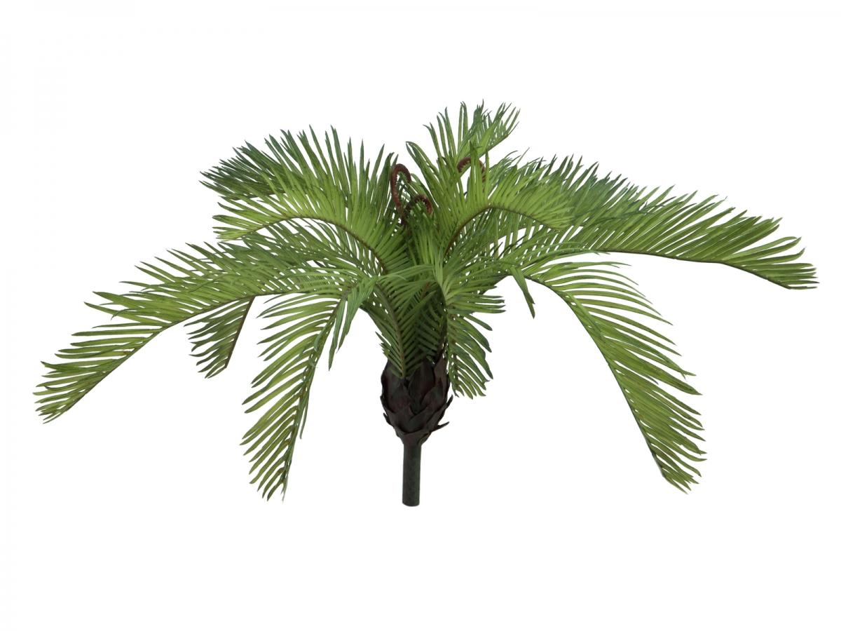 EUROPALMSCycas Fern, artificial plant, 50 cm