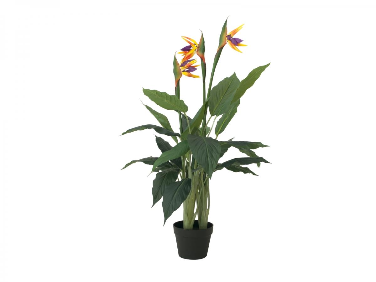 EUROPALMSBird-of-paradise flower, artificial plant, 90cm