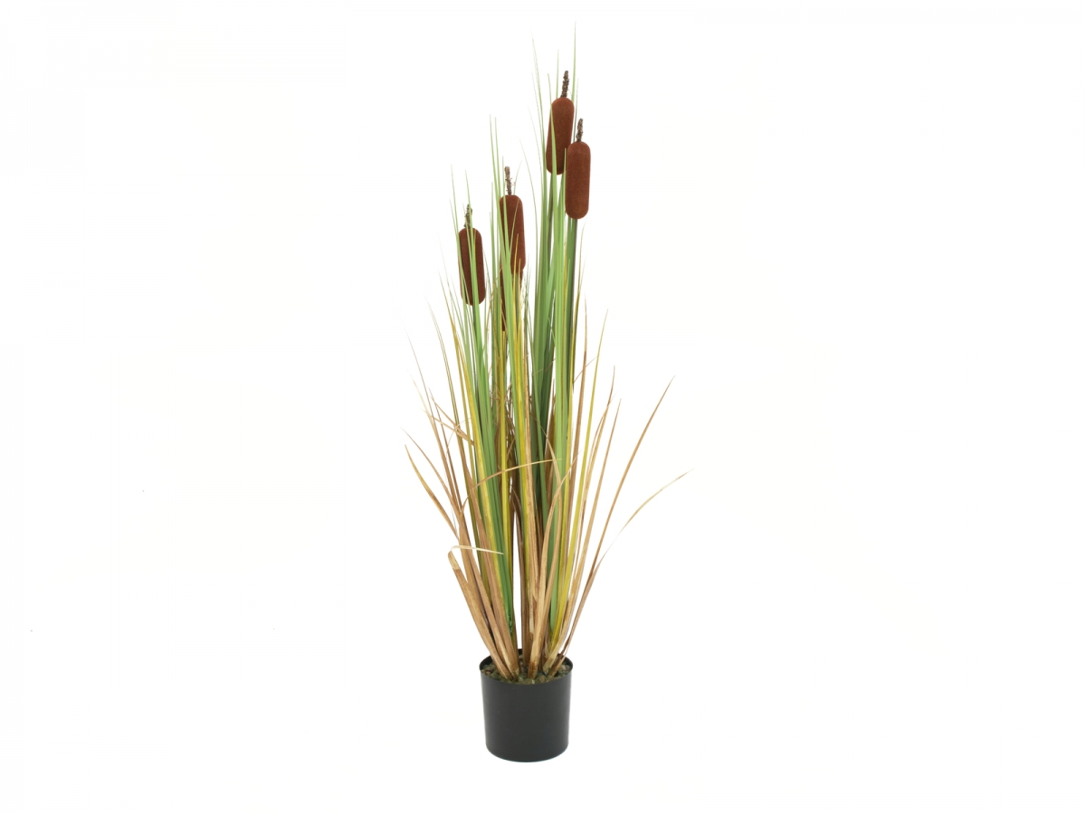 EUROPALMSBulrush, alrtificial plant, 150cm
