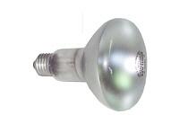 EGBReflektorlampen E27 R80/100W