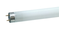 OsramStandard-L-Lampen L36W/640 Basic-Leuchtstofflampe T8 * Socke