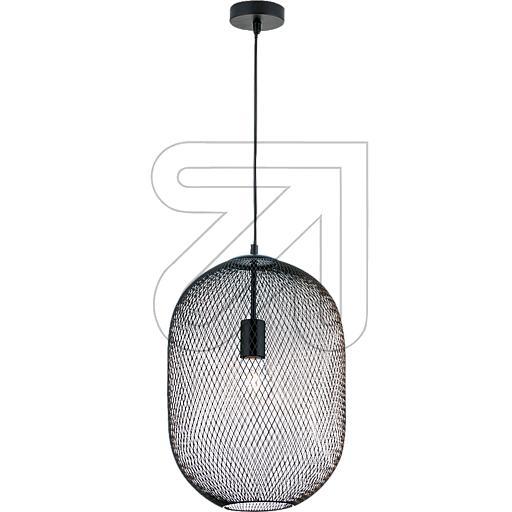 ORION Licht Pendelleuchte HL 6-1699/1 schwarz 625380