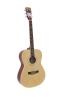 DIMAVERYAW-303 Western guitar nature