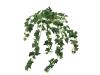EUROPALMSIvy bush, artificial, 50cm