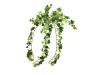 EUROPALMSHolland ivy bush, artificial, 50cm