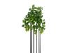 EUROPALMSEUROPALMS Philo bush premium, artificial, 50cm
