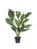 EUROPALMSSpathiphyllum deluxe, künstlich, 83cm