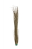 EUROPALMSReed grass, khaki, artificial, 127cm