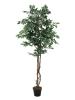 EUROPALMSVariegated Ficus, artificial plant, 180cm