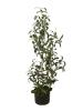 EUROPALMSOlivenbäumchen, Kunstpflanze, 90 cm