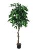 EUROPALMSJungle tree Mango, artificial plant, 180cm