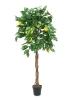 EUROPALMSLemon tree, artificial plant, 150cm