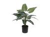 EUROPALMSCaladium, Kunstpflanze, 38cm