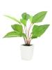 EUROPALMSFan leaf, artificial, 45cm