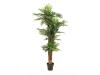 EUROPALMSAreca Palme, Kunstpflanze, 170cm
