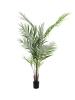 EUROPALMSGroßblatt-Areca, Kunstpflanze, 165cm