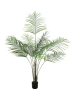 EUROPALMSGroßblatt-Areca, Kunstpflanze, 185cm