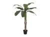 EUROPALMSBananenbaum, Kunstpflanze, 145cm