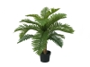 EUROPALMSCycas Palme, Kunstpflanze, 70cm