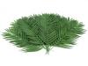 EUROPALMSCoconut palm branch, artificial, 110cm 12x
