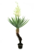 EUROPALMSYucca palm with blossoms, artificial plant, 222cm