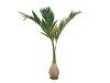 EUROPALMSPhoenix palm, artificial plant, 240cm