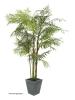 EUROPALMSCycasrohr Palme, Kunstpflanze, 280cm