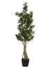 EUROPALMSPodocarpus tree, artificial plant, 115cm