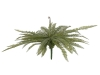 EUROPALMSBoston fern, artificial plant, green, 70cm