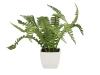 EUROPALMSBoston fern in pot, artificial plant, 25cm
