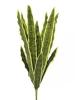 EUROPALMSSansevieria (EVA), künstlich, grün-gelb, 74cm