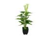 EUROPALMSMini Calla, artificial plant, white, 43cm