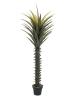 EUROPALMSYucca palm, artificial plant, 165cm