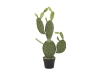 EUROPALMSBlätterkaktus, Kunstpflanze, 75cm
