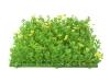 EUROPALMSBuchsmatte, künstlich, grün-gelb, 25x25cm