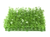 EUROPALMSBuchsmatte, künstlich, grün-weiß, 25x25cm
