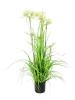 EUROPALMSStar Grass artificial, 120cm