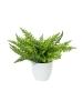 EUROPALMSFern bush in pot, artificial plant , 22 leaves, 33cm