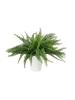 EUROPALMSFarnbusch im Dekotopf, Kunstpflanze, 62 Blätter, 48cm