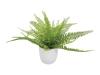 EUROPALMSFarnbusch im Dekotopf, Kunstpflanze, 26 Blätter, 27cm