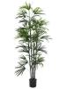 EUROPALMSFächerpalm-Setzling, Kunstpflanze, 150cm