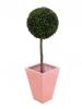 EUROPALMSBoxwood tree, artificial, 110cm, d=60cm