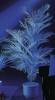 EUROPALMSKentia palm, artificial, uv-white, 90cm
