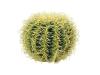 EUROPALMSGoldkugelkaktus, Kunstpflanze, 27cm