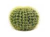 EUROPALMSGoldkugelkaktus, Kunstpflanze, 37cm