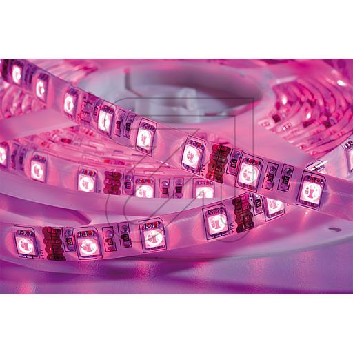 EGB LED RGB Stripe-Rolle IP65/IP20 12V-DC 36,2W 685340